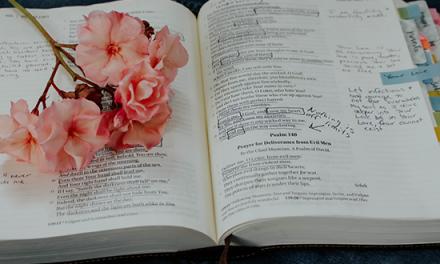 Orando la Biblia por el 2019
