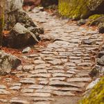 Pastores que caen: 10 piedras que los hacen tropezar