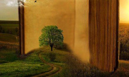 Qué dice el resto de la Biblia sobre Génesis (parte 1)